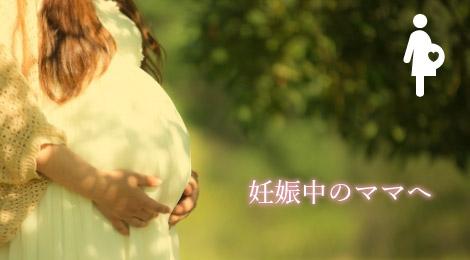 妊娠中のママへ
